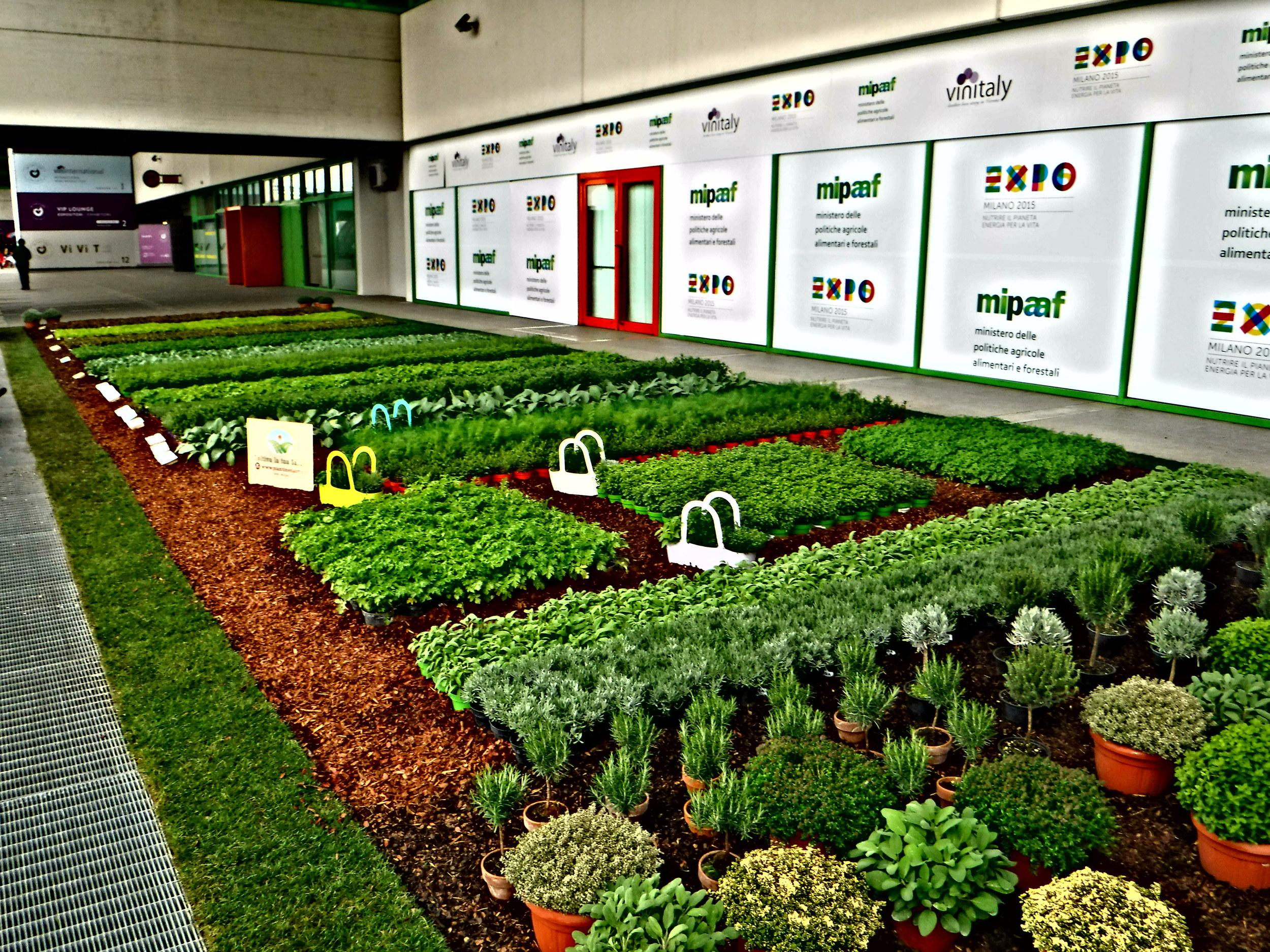 1.Sol&AgrifoodOrganicHerbGarden.JPG