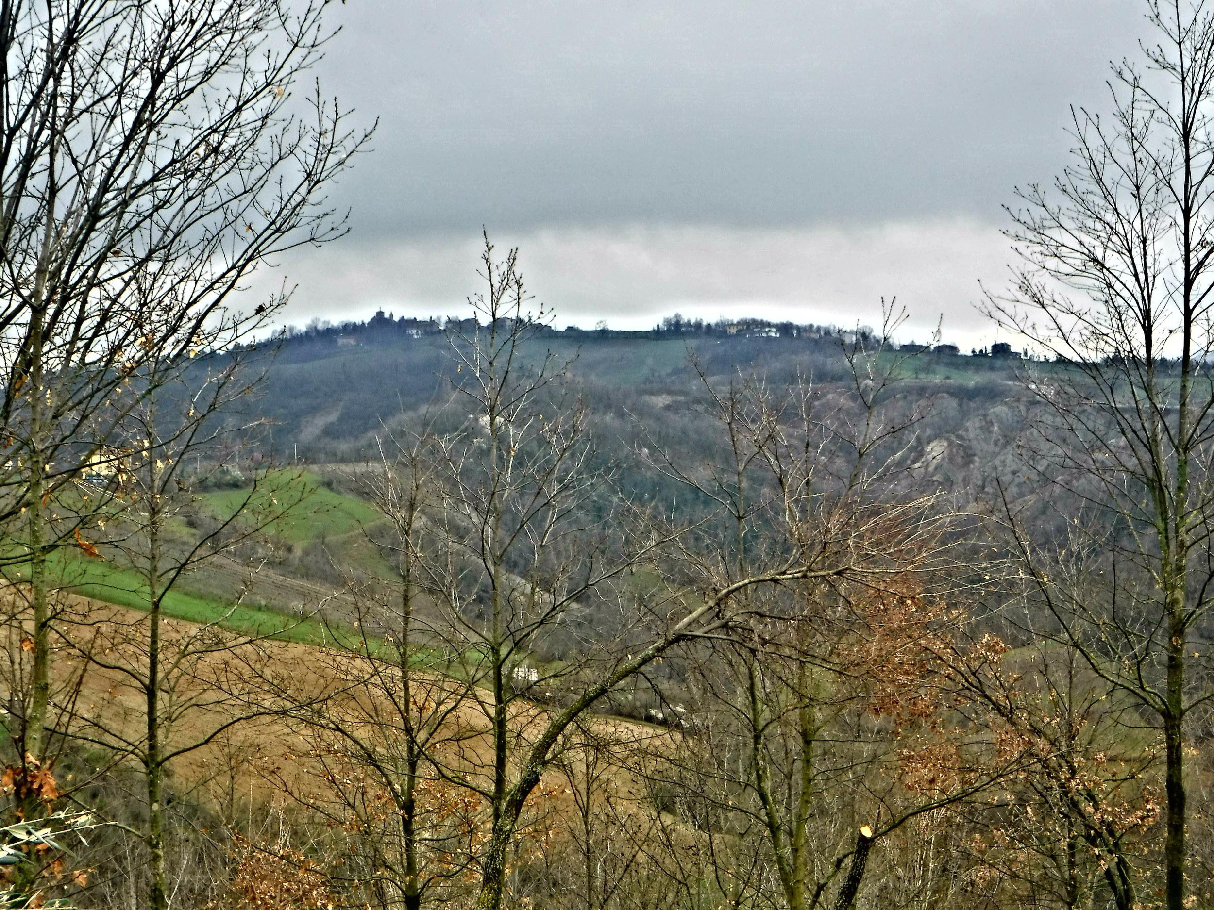 1. The Hills of Torre Maina, Modena, Italy.JPG