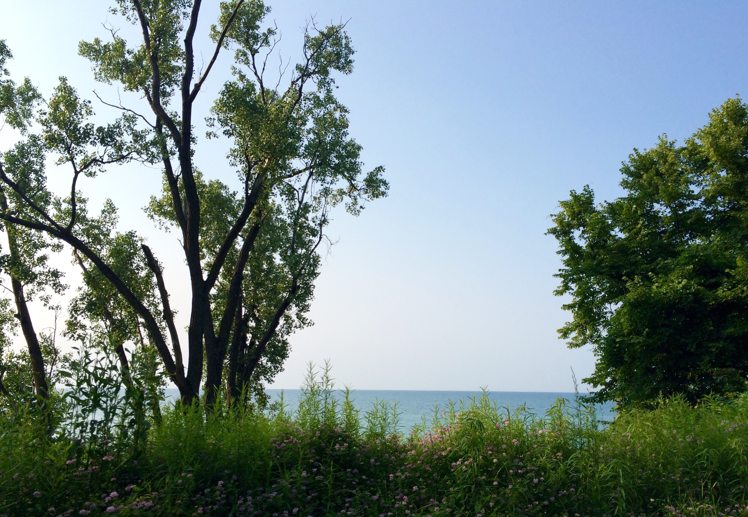 Beverly shores