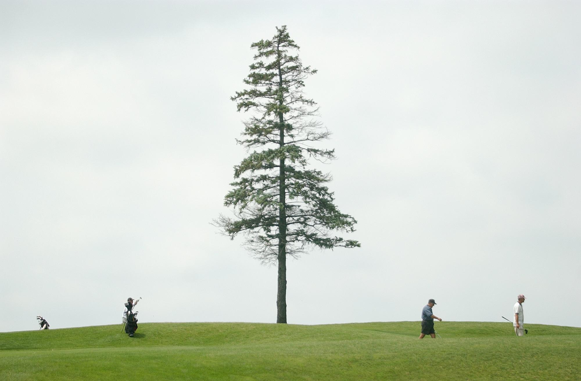 Amateur Golf.jpg