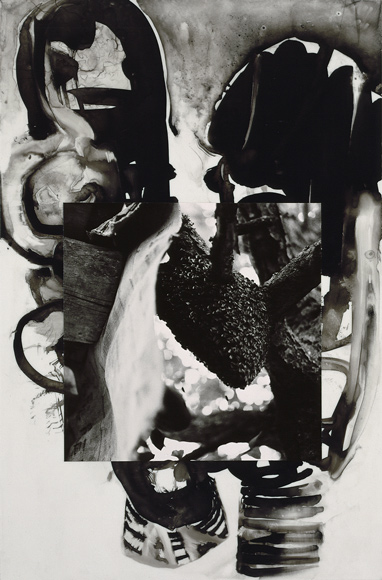 Brian Wood,  Swarm , Ink and photo on mylar    Collection: The Museum of Modern Art, NYC
