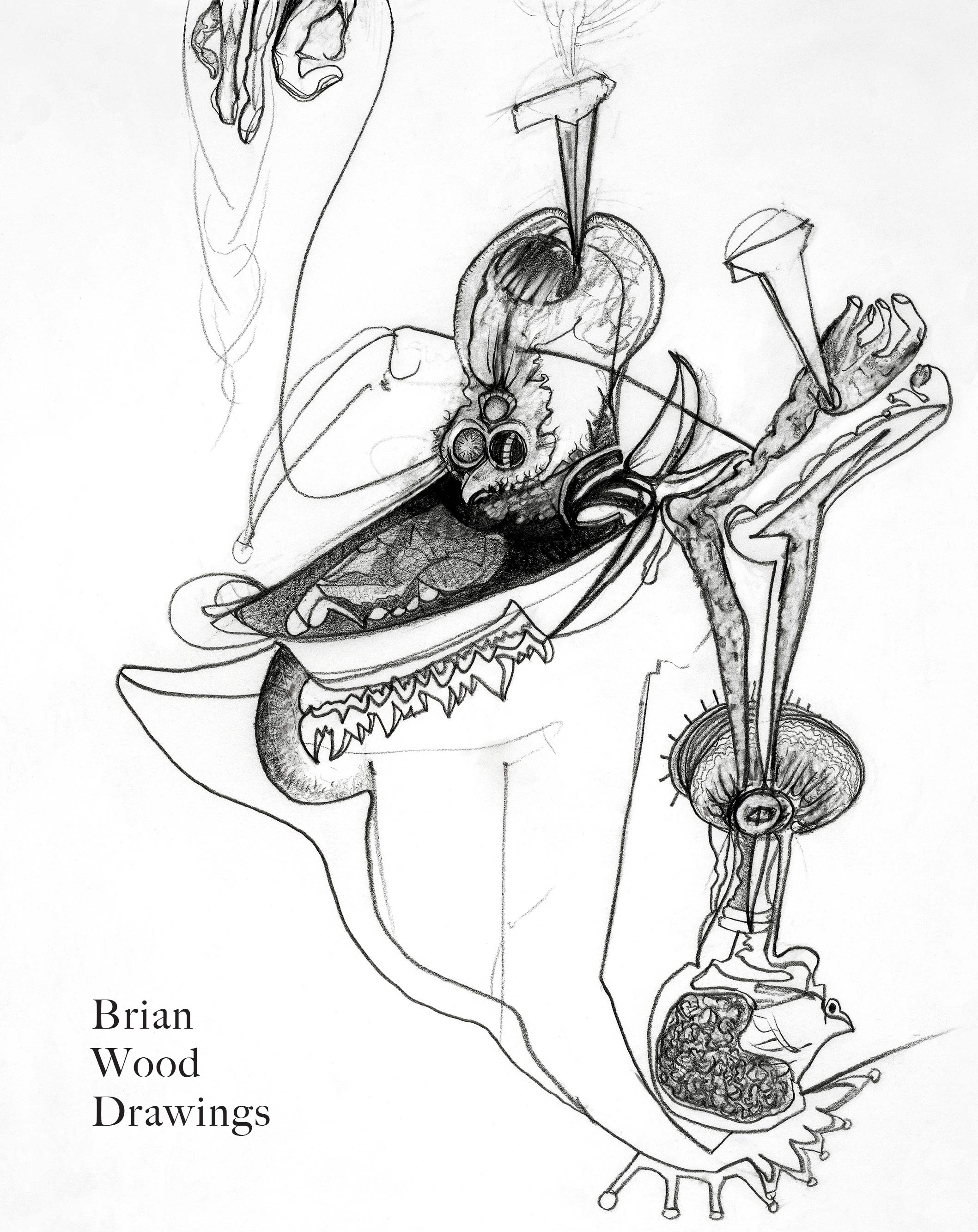 Brian-Wood-book-cover.jpg