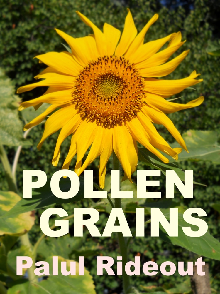 Pollen Grains Book