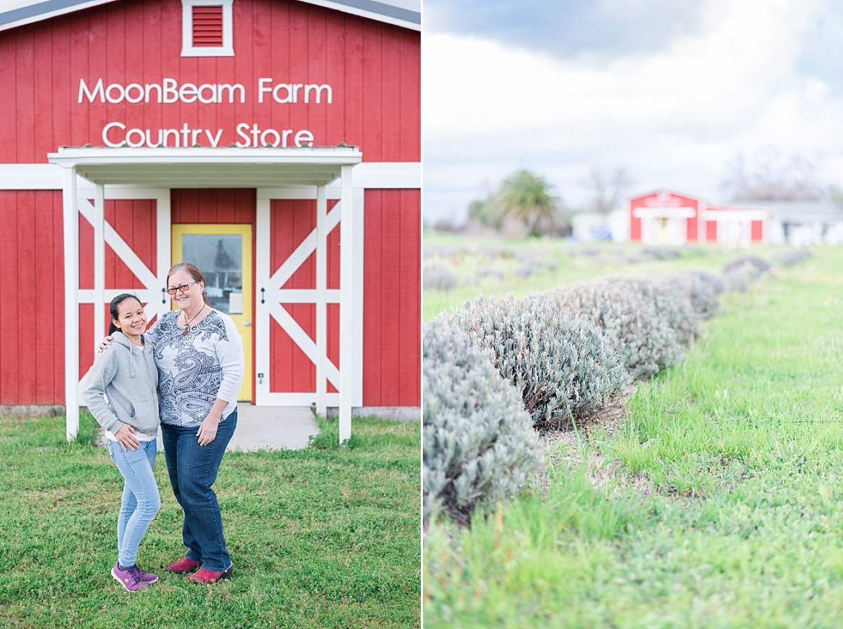 moonbeam farm lavender fields organic loofah corning california_0279.jpg