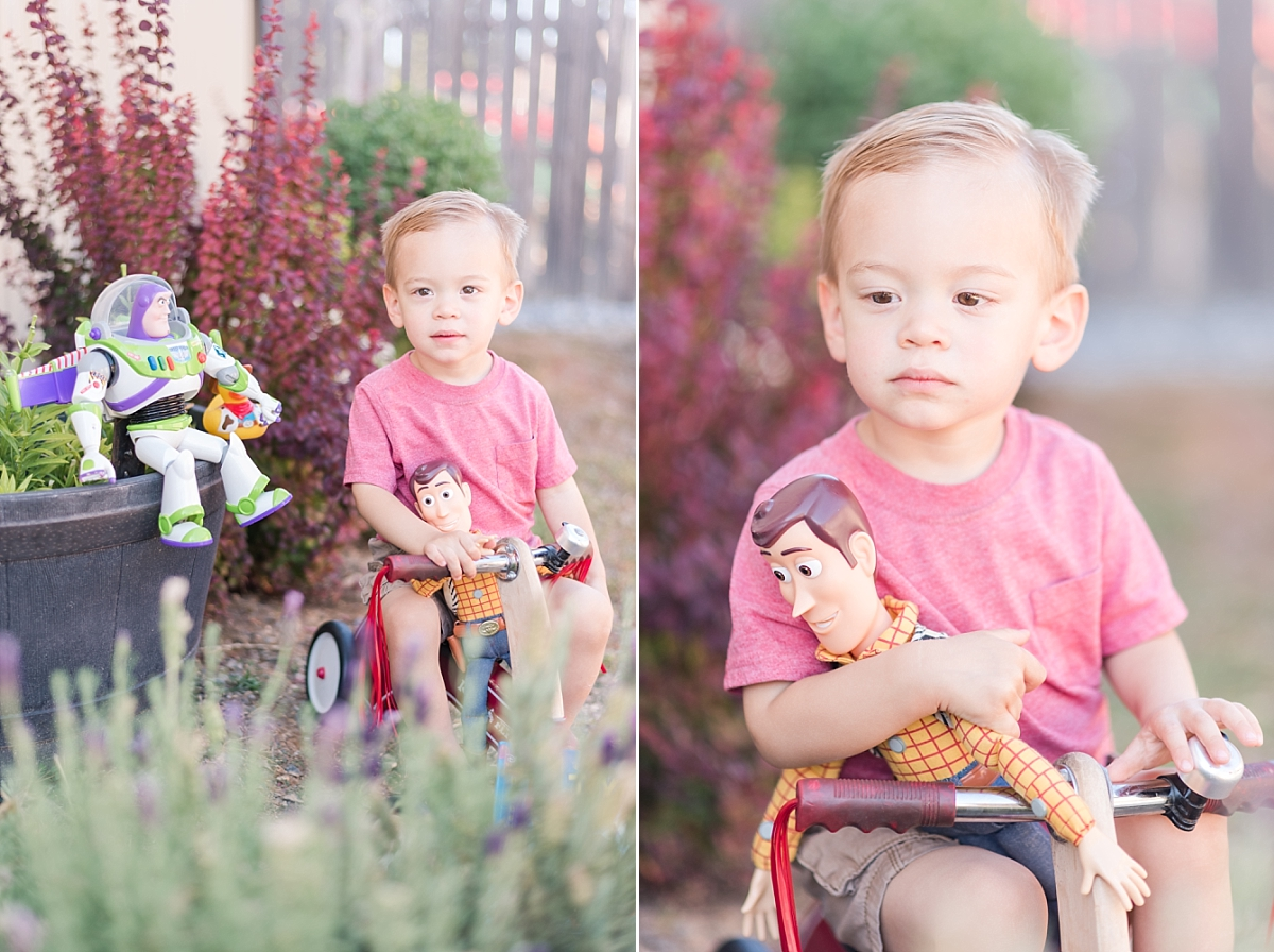 soon to be big brother with toy story characters backyard portraits_0344.jpg