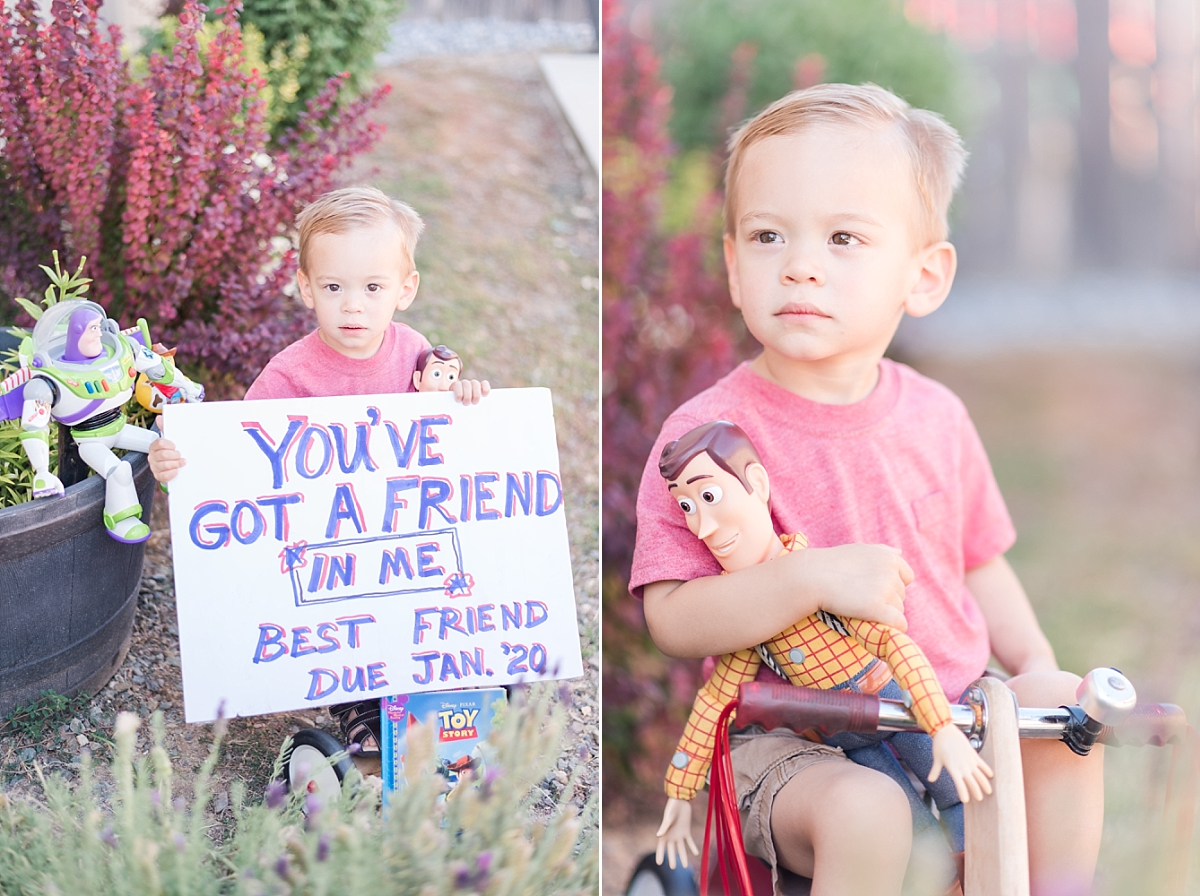 soon to be big brother with toy story characters backyard portraits_0347.jpg