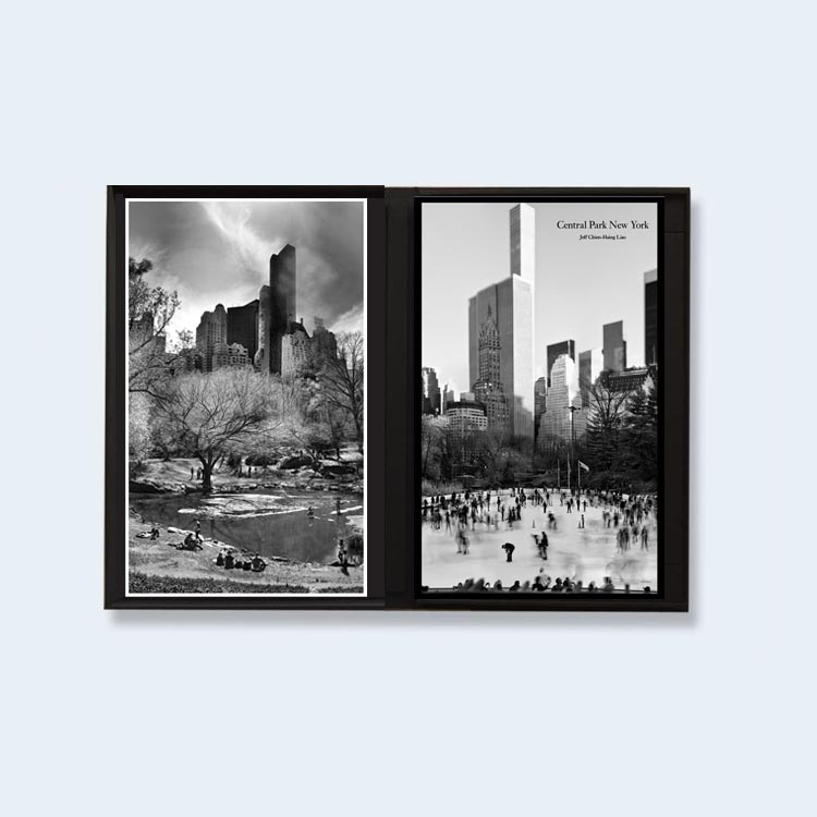 JEFF LIAO  |  Central Park New York (Special Edition)  | Order >