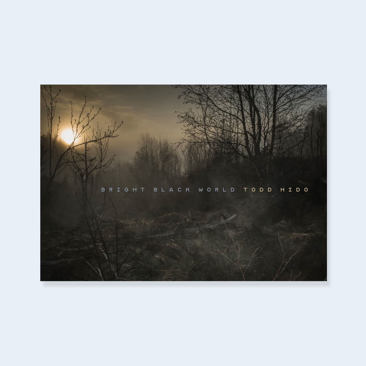 SOLD OUT (2nd Printing Coming Soon) TODD HIDO |  Bright Black World