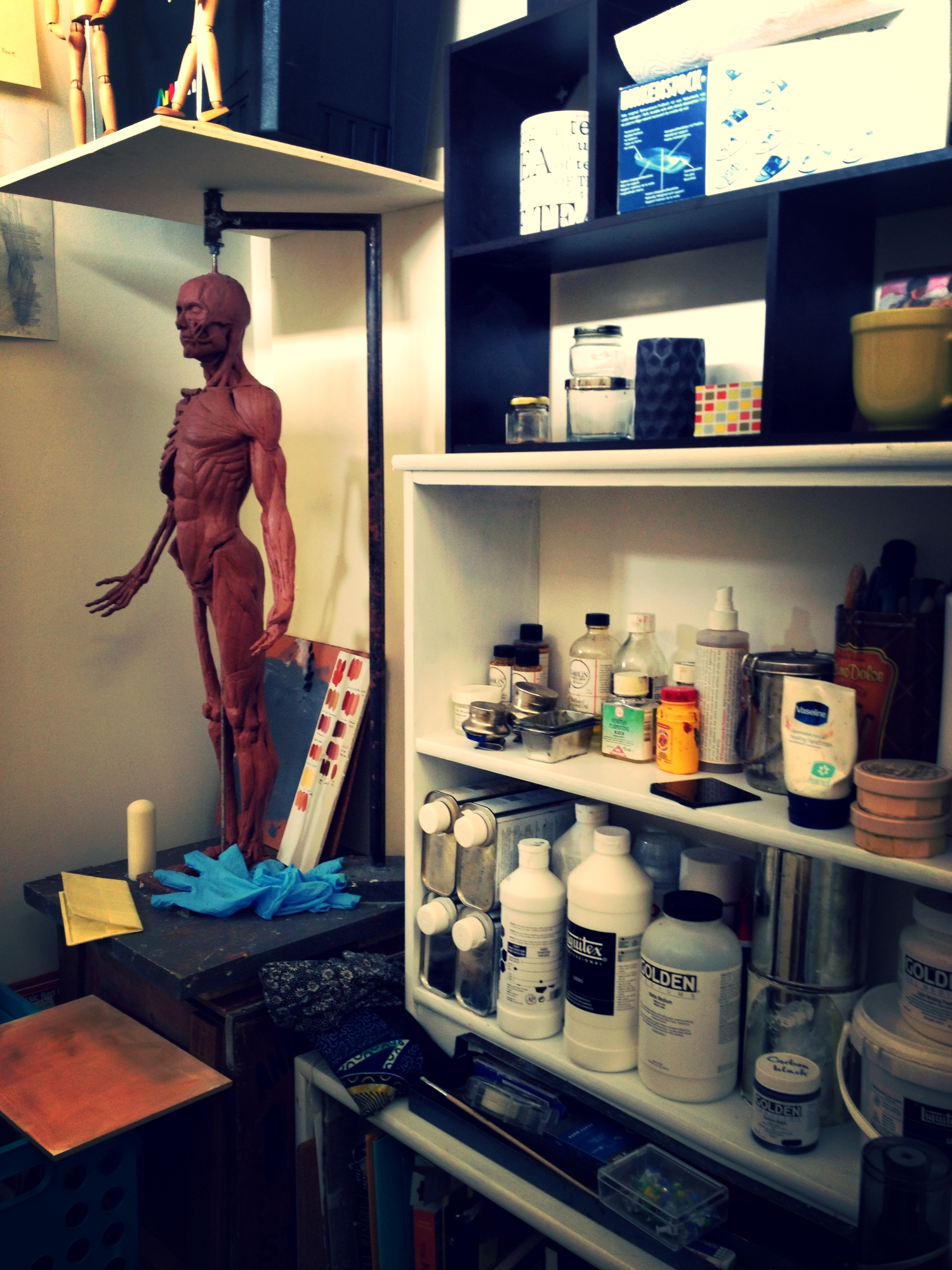 Harvey (my ecorche sculpture) is moved into his new home! My studio is full of stuff.