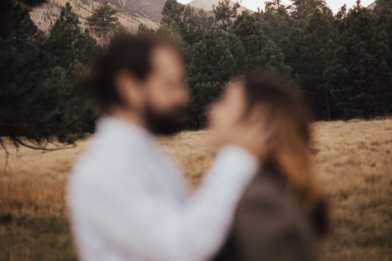Katie_Jon_Forest_Engagement (19).jpg