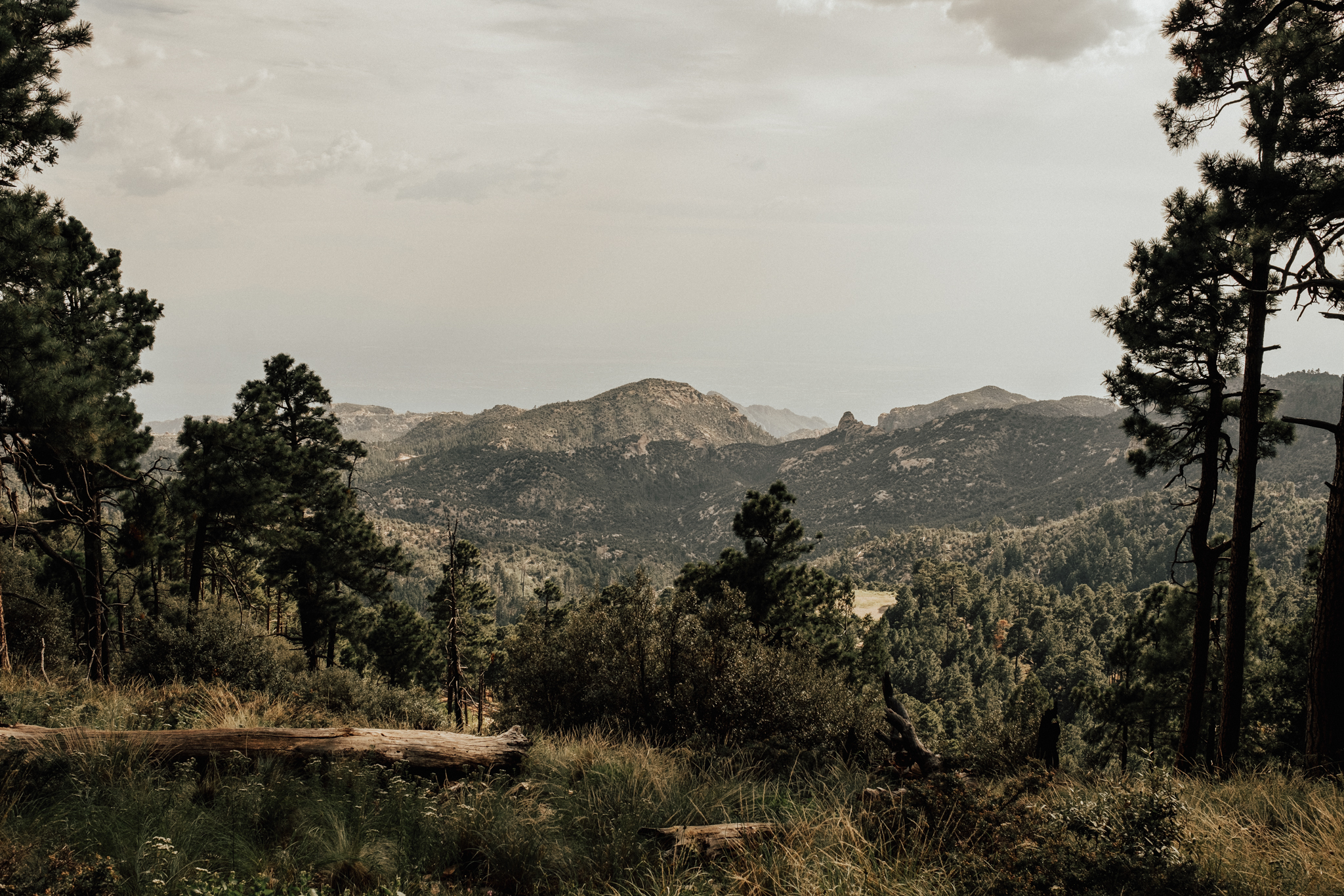 Arizona-Adventure-Elopement-Wedding-Photographer-94.jpg