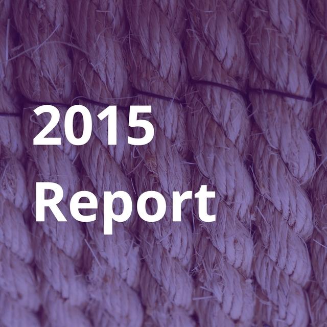 2015 Report