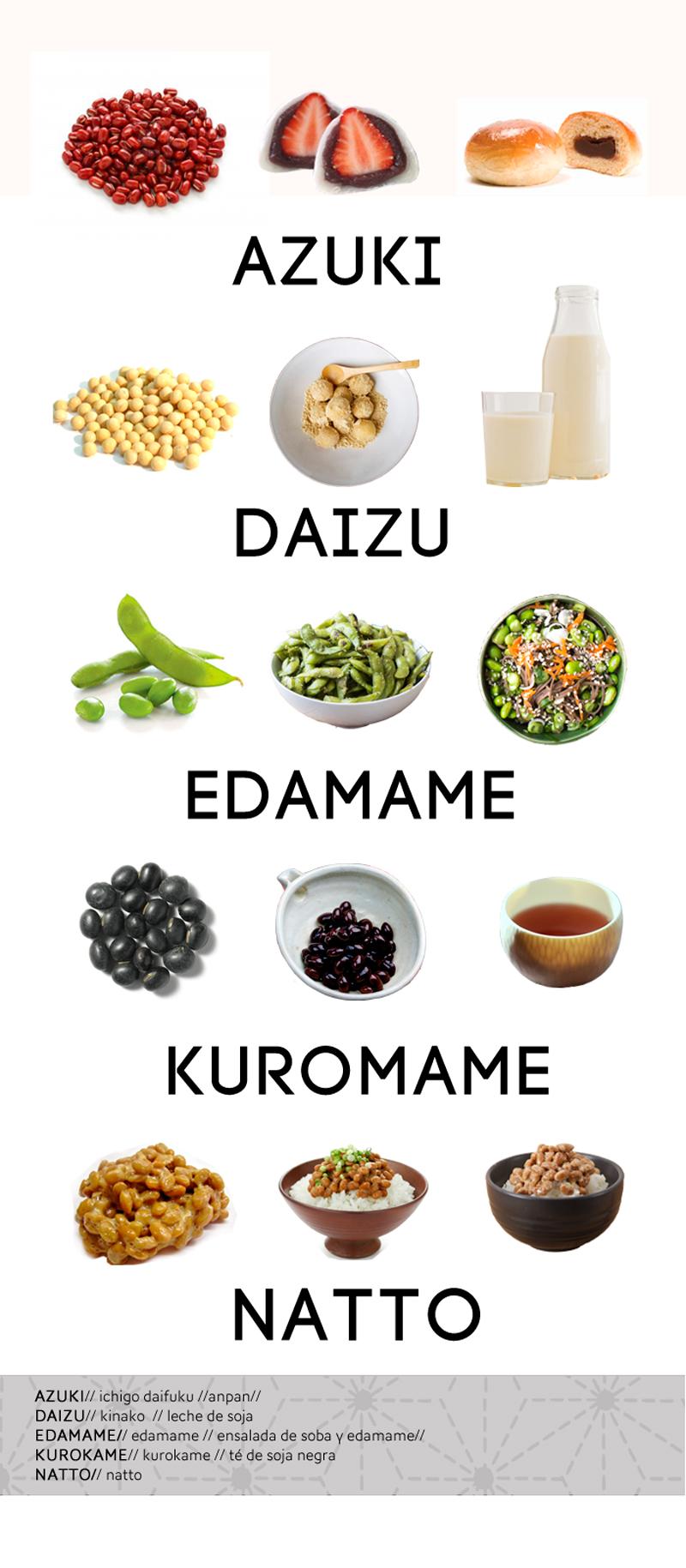 variedades de judías japonesas