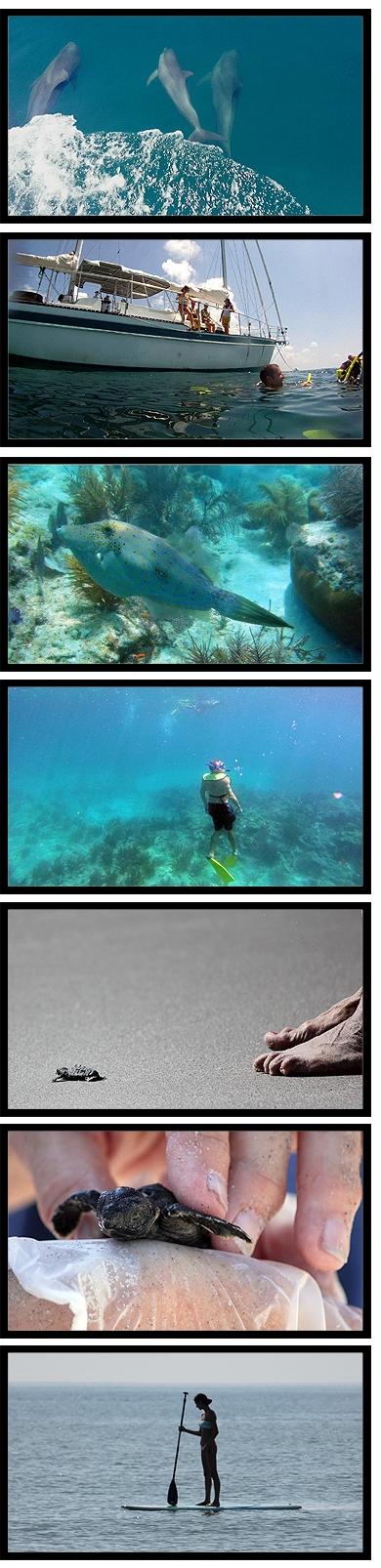 three_oceans_blogset.jpg