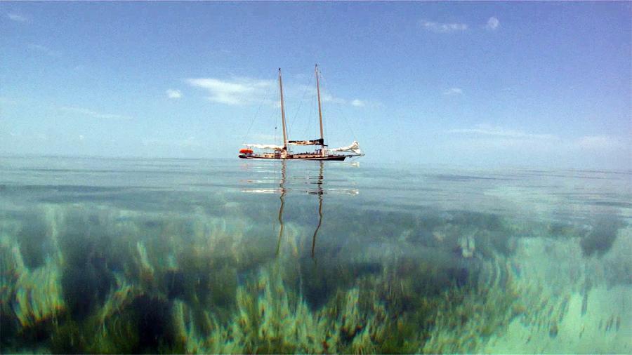 Danger Charters'  Skipjack, The Sarah -  Key West, FL