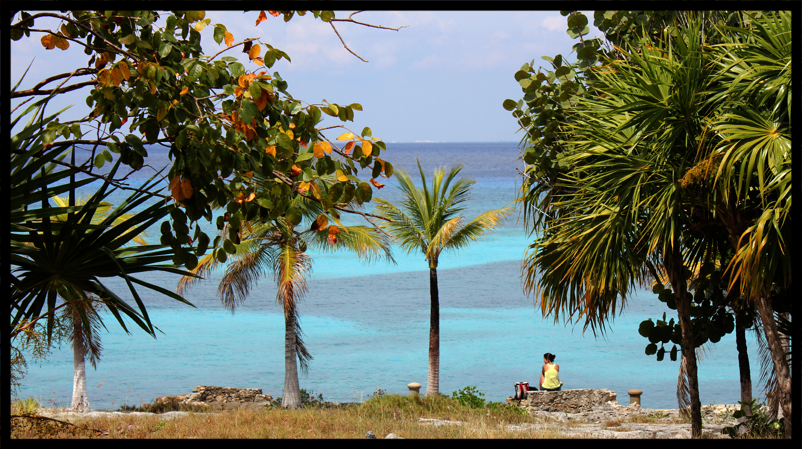 beach_sitter.jpg