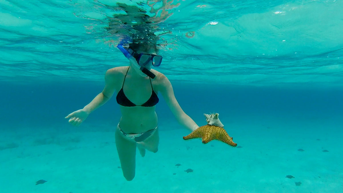 Marina with Pincushion Sea Star and Hitchhiker - Cozumel, Mexico