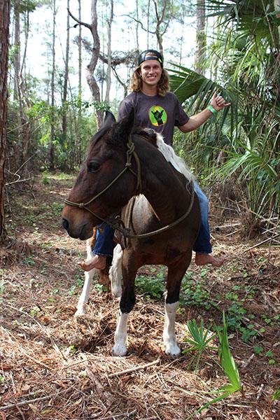 kwipp_horse.jpg
