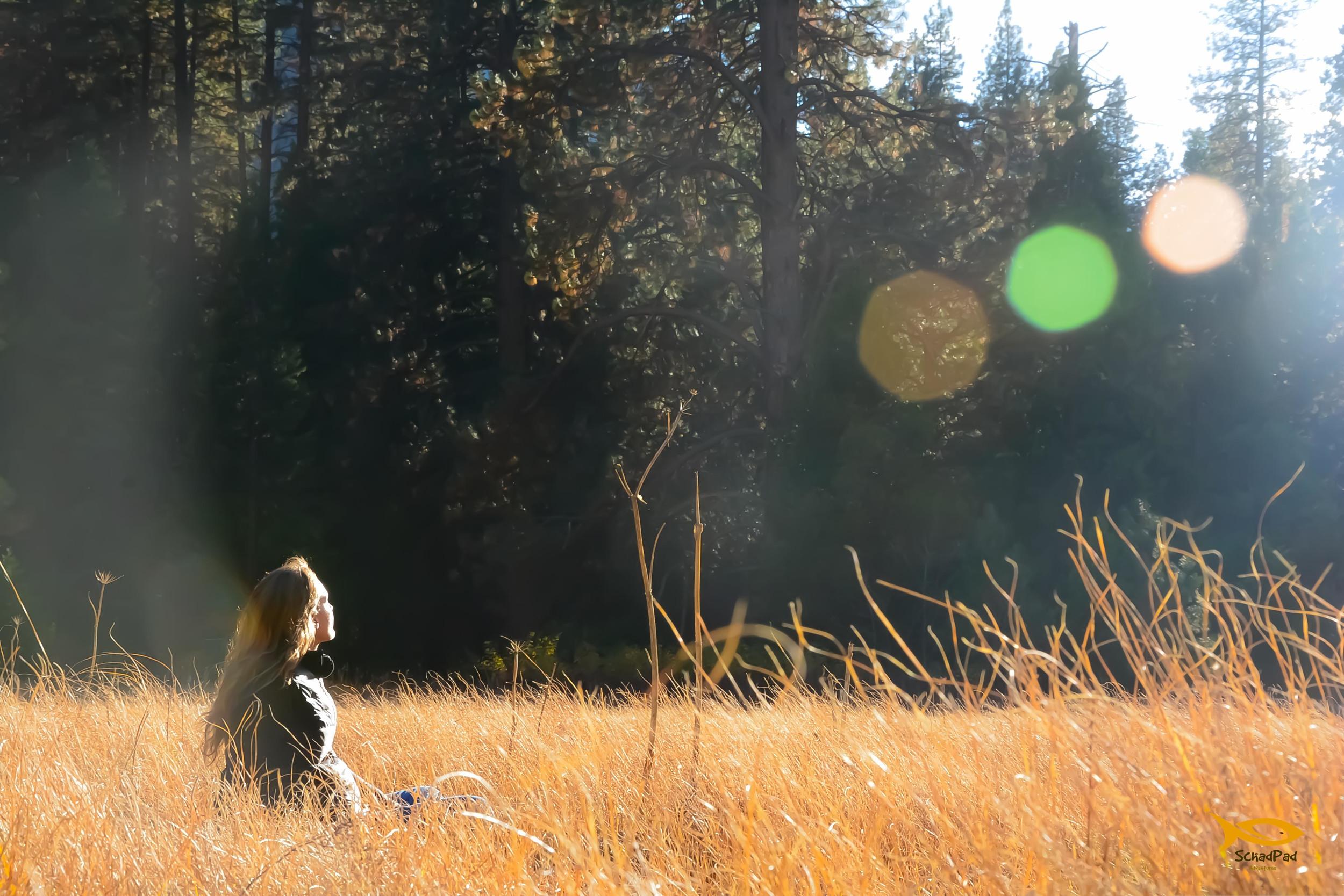 Kelly in the Meadow.