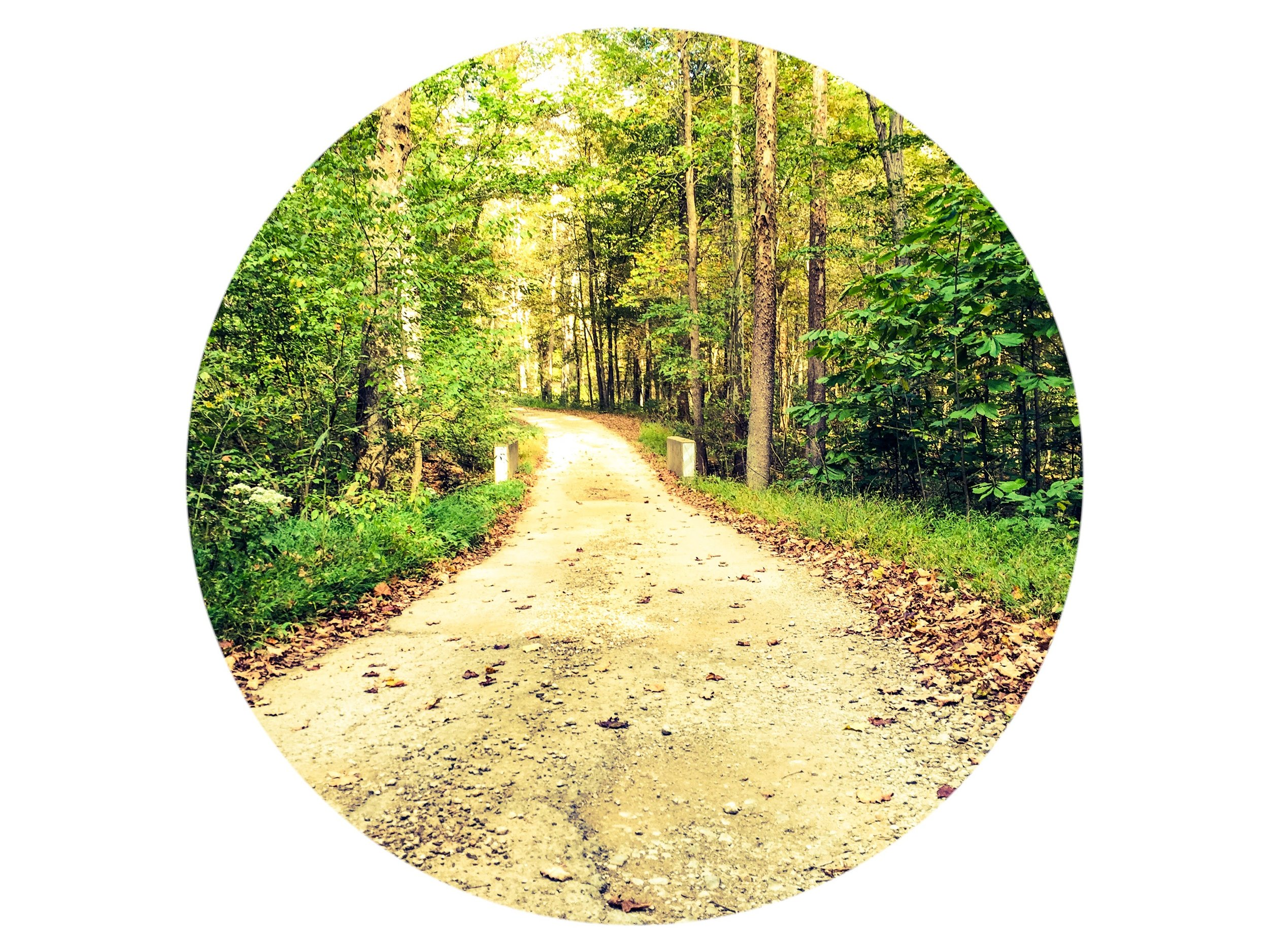 The Road Less Travelled.