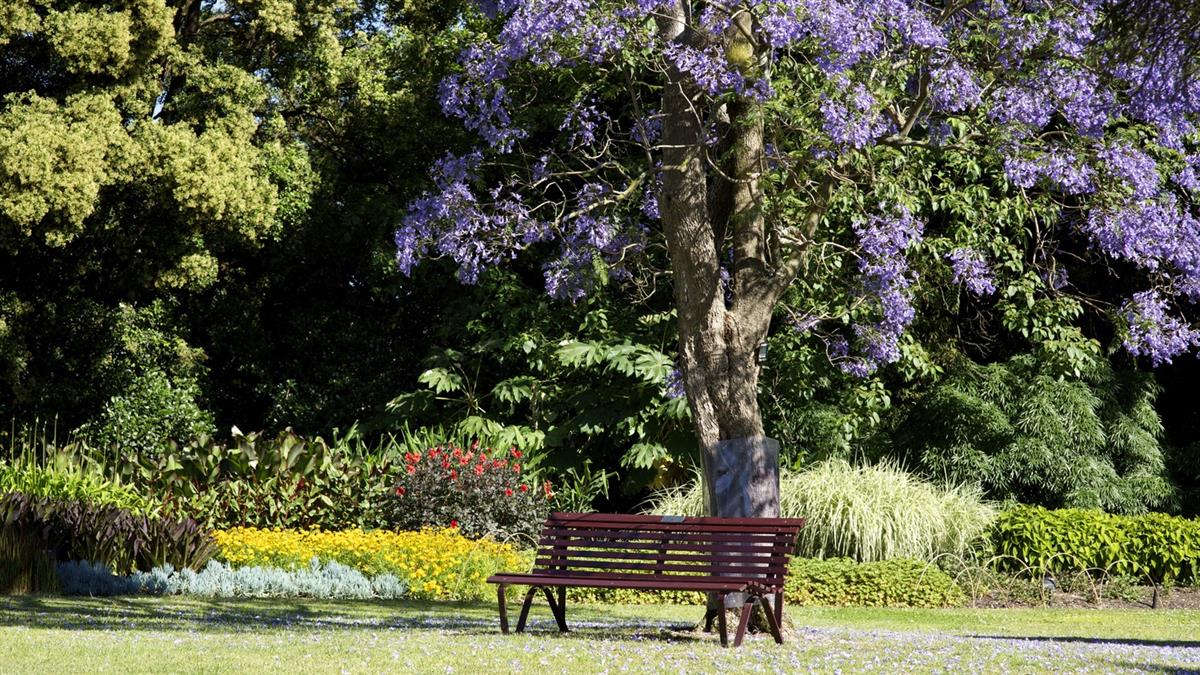 Royal Botanic Gardens (South Yarra)