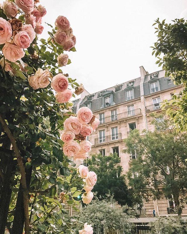 Paris, Mars 2019.