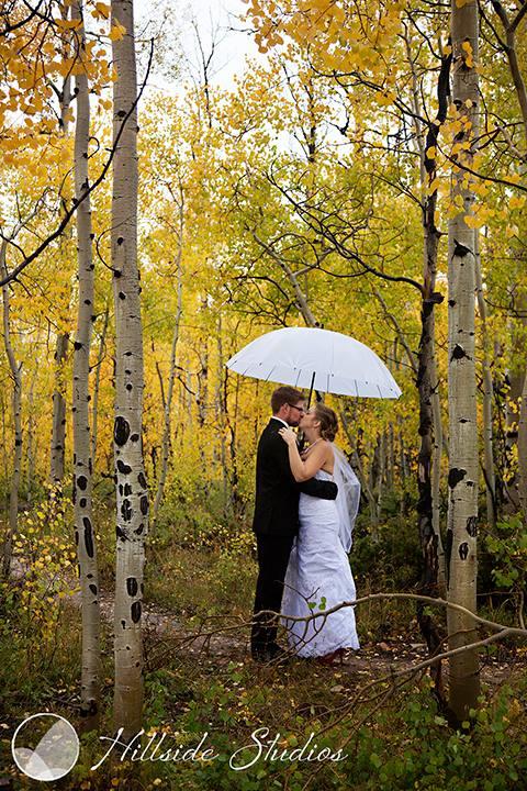 An Aspen Grove....in September, near Fraser, CO