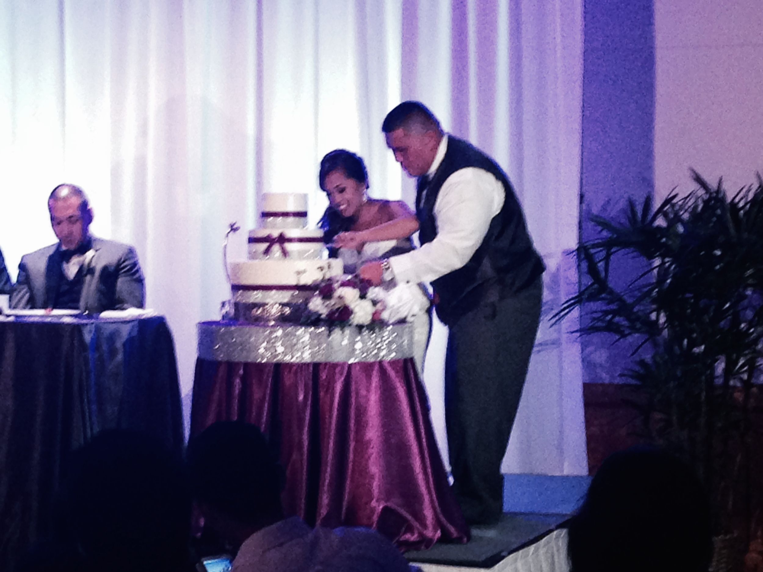 mike-ashley-wedding-cake-cutting