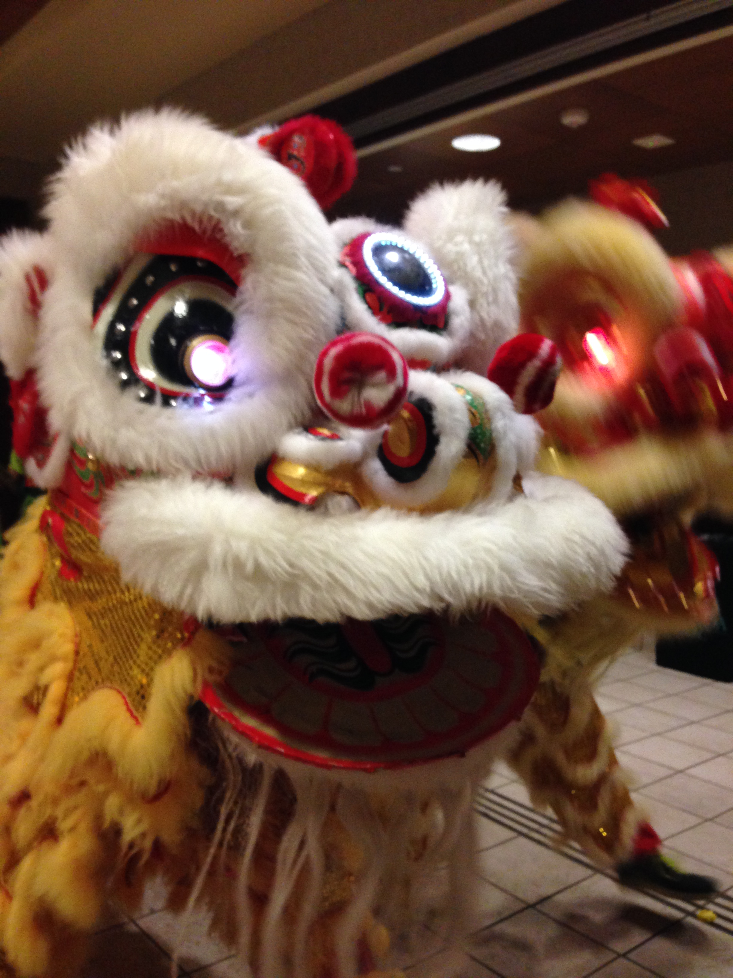 27-hawaii-lion-dance.JPG