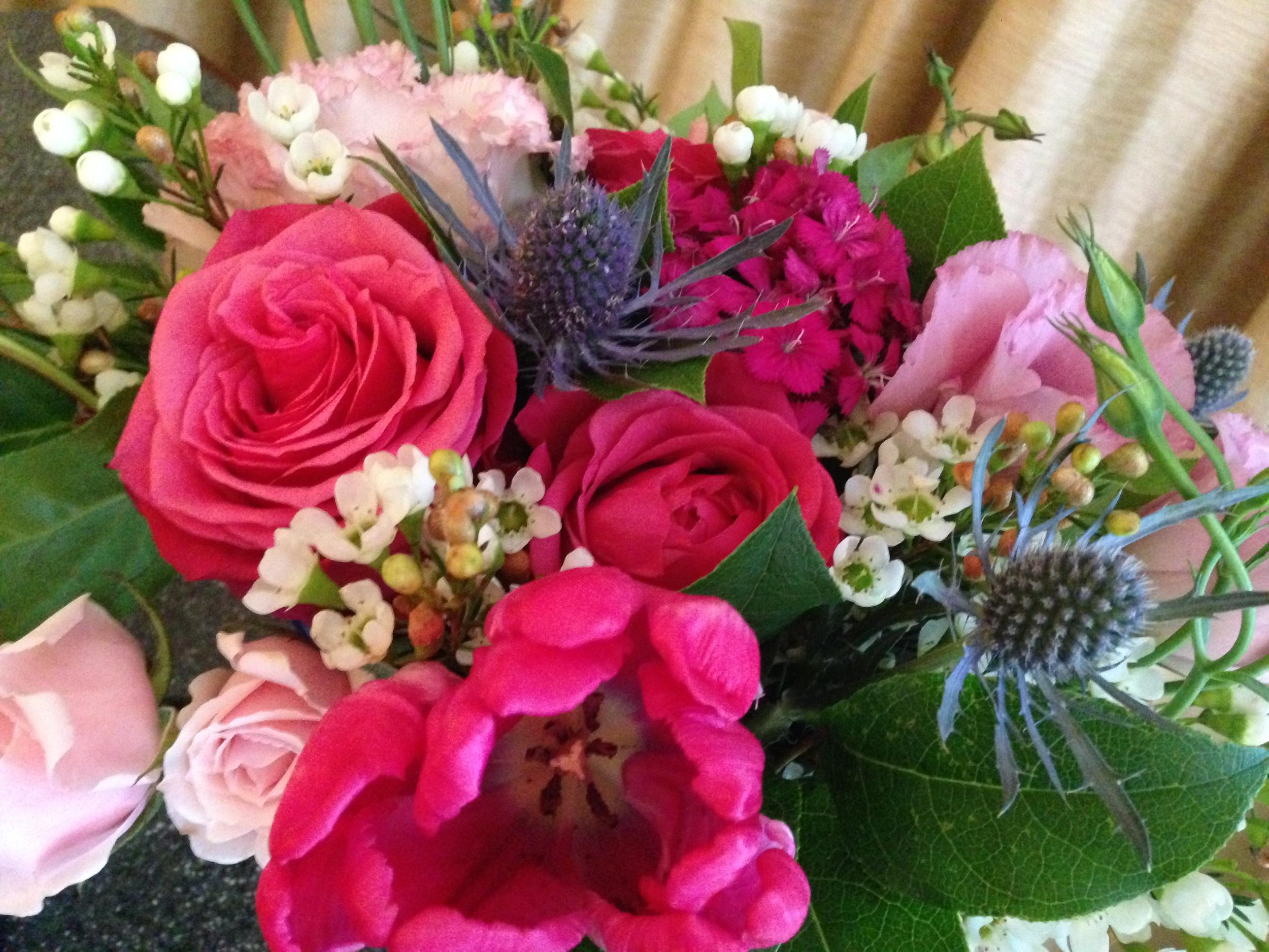 marie-blooms-flowers-1.JPG