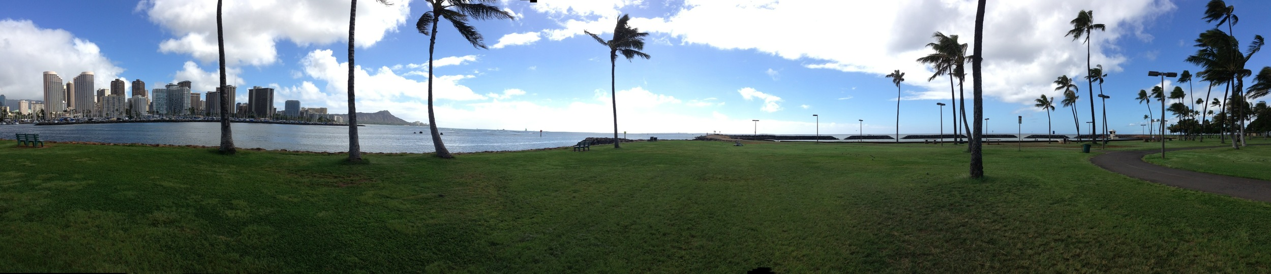 Grassy area that fronts the ocean facing Diamond Head.