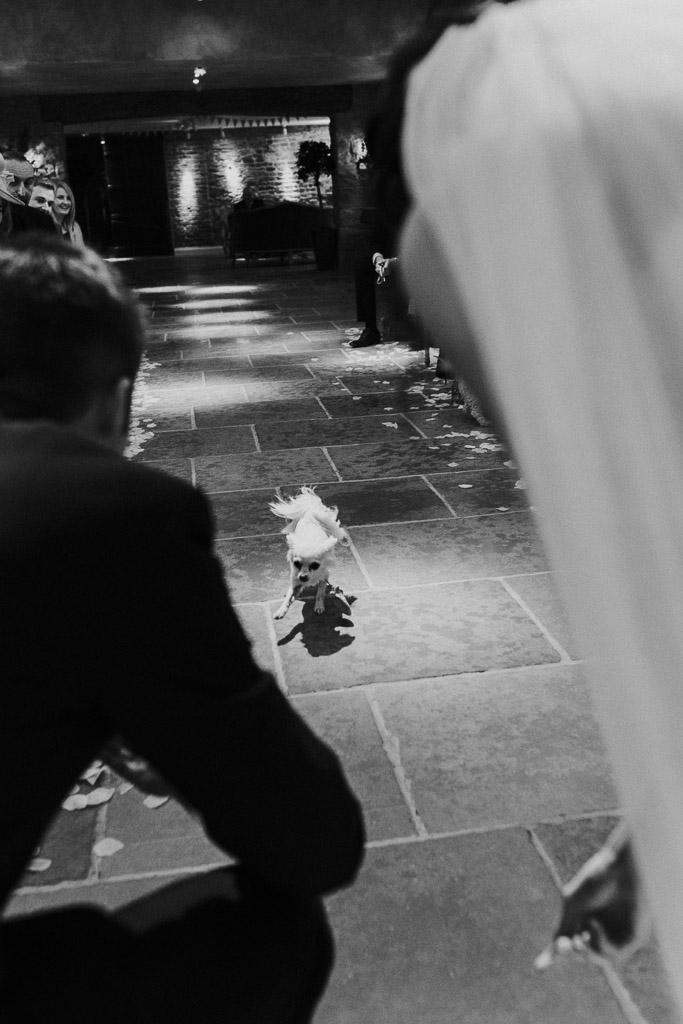 Le Petit Chateau Wedding Photographer-63.jpg