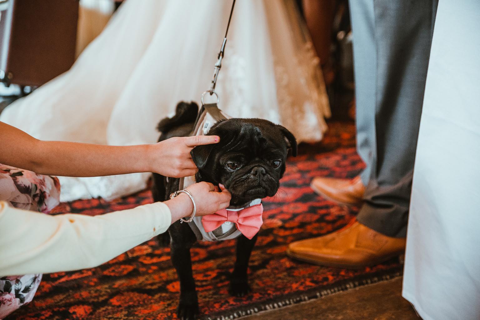 Newton Hall Wedding Photographer-56.jpg
