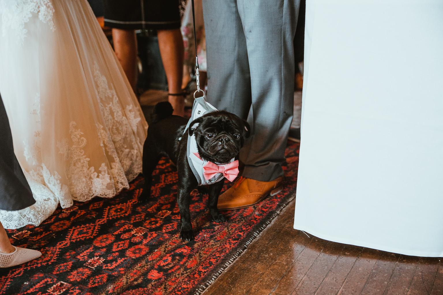 Newton Hall Wedding Photographer-57.jpg