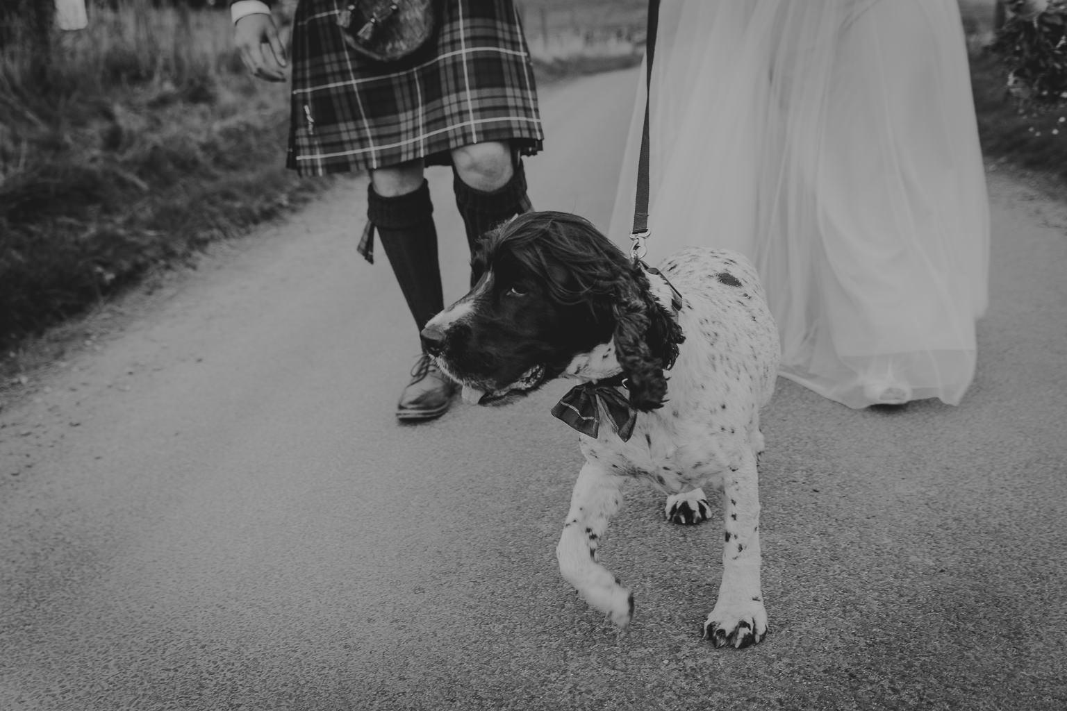 Glen Clova Scotland Wedding-409.jpg