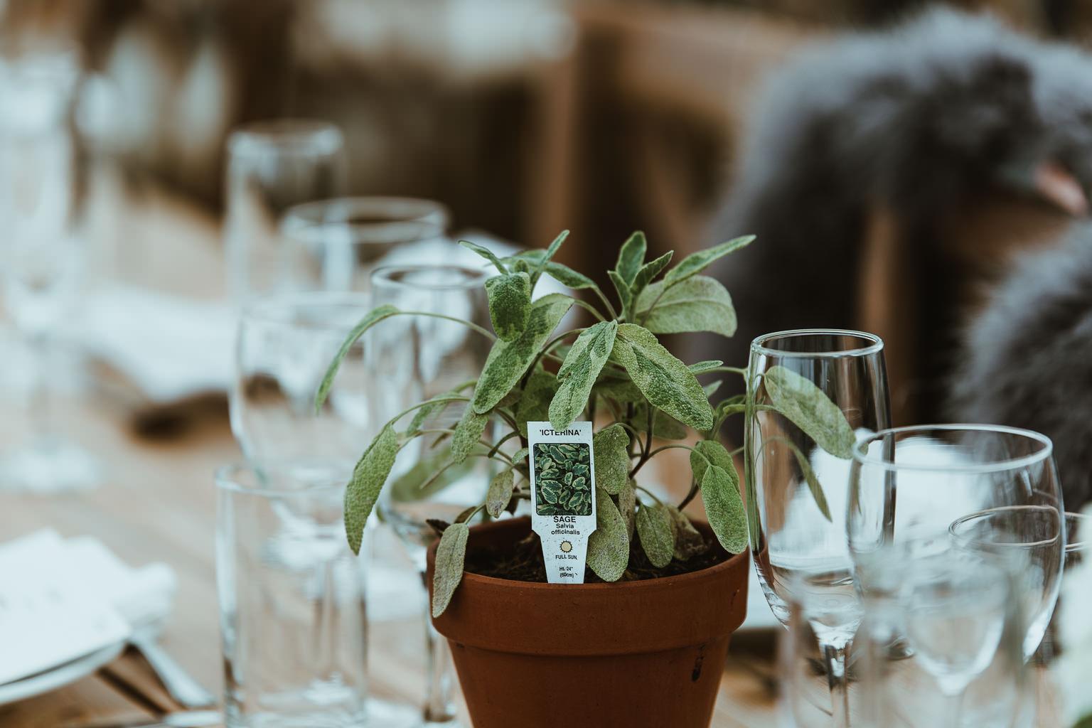North East Marquee Wedding-81.jpg