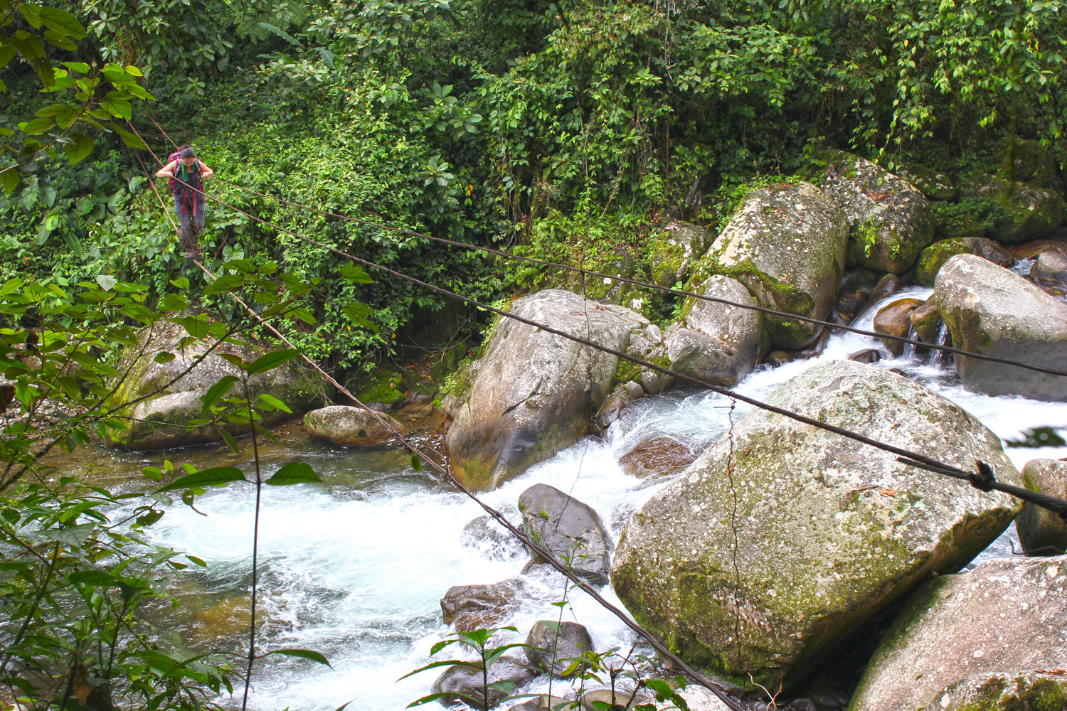 During rainy seasons, RioChanguinola must be crossed on makeshift cables tied to trees. We crossed this river close to a dozen times, three of which required use of such a bridge.