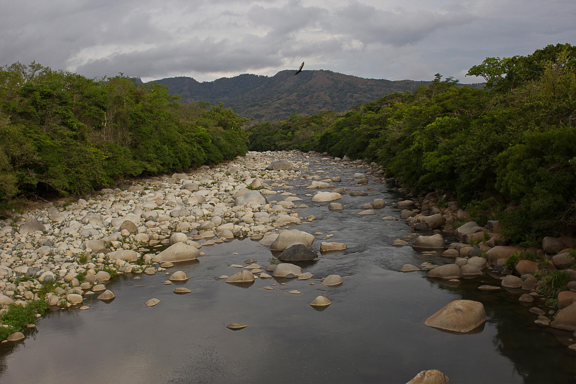 D9-Jurassic-Park-river-2000.jpg