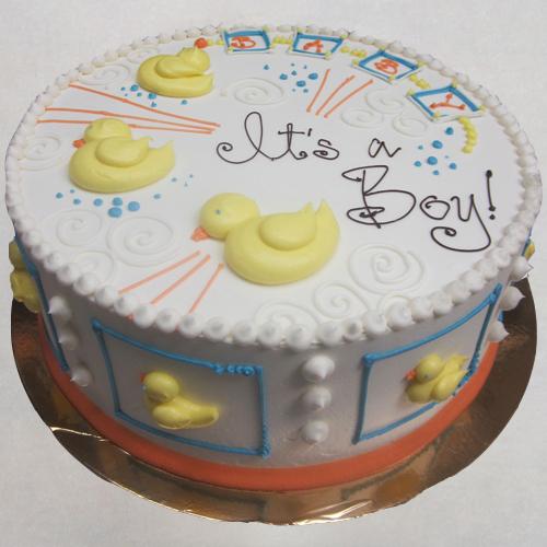 Baby Ducks | It's a Boy