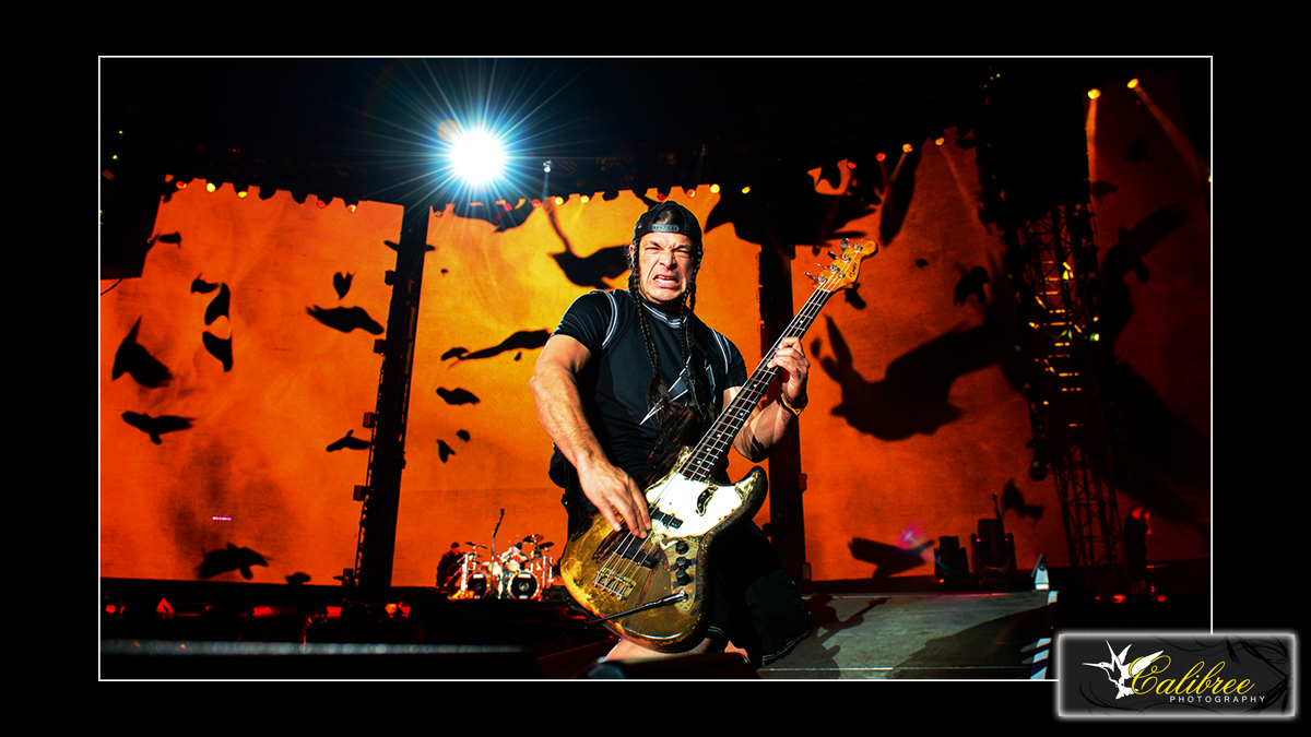 Metallica SB50 HiRes_Calibree (23 of 57) 16x9 Logo.jpg