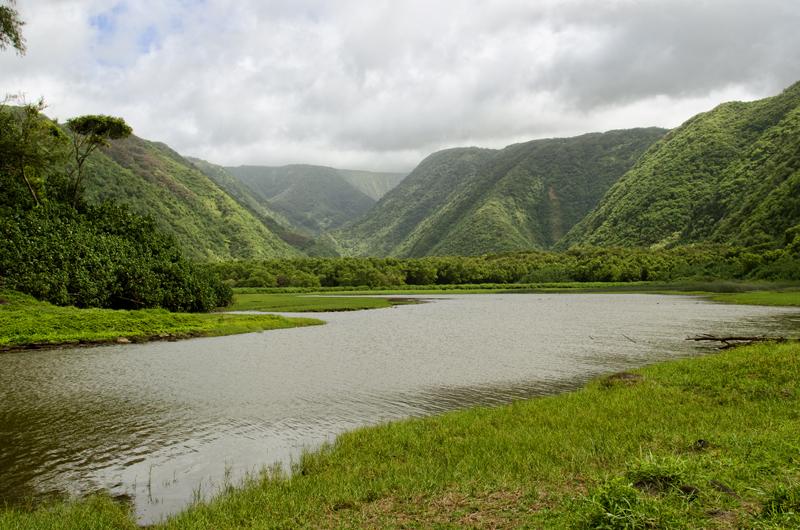 Pololu River