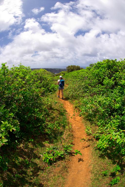 Honokae Nui overlook