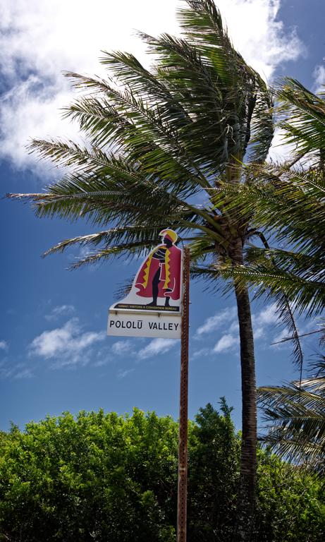 Kamehameha The Great sign