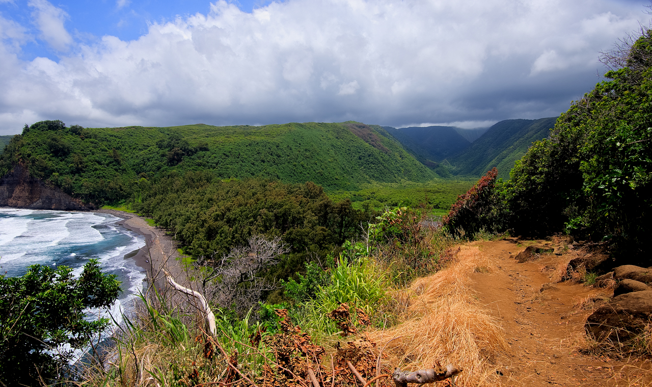 View from Pololu Valley Overlook