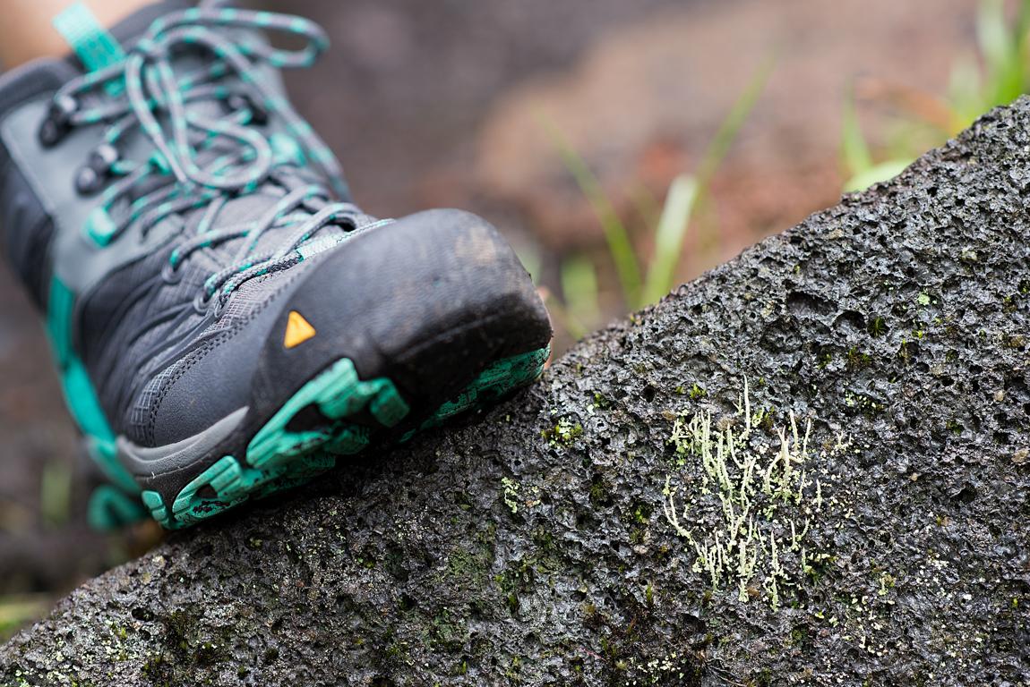 hiking boot.jpg