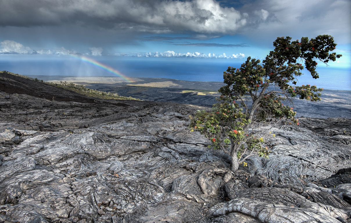 lava field near end of cocr.jpg