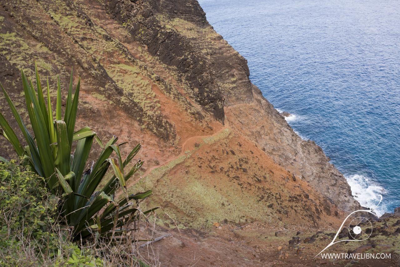 Kalalau trail past Hanakoa Stream transforms into an arid landscape