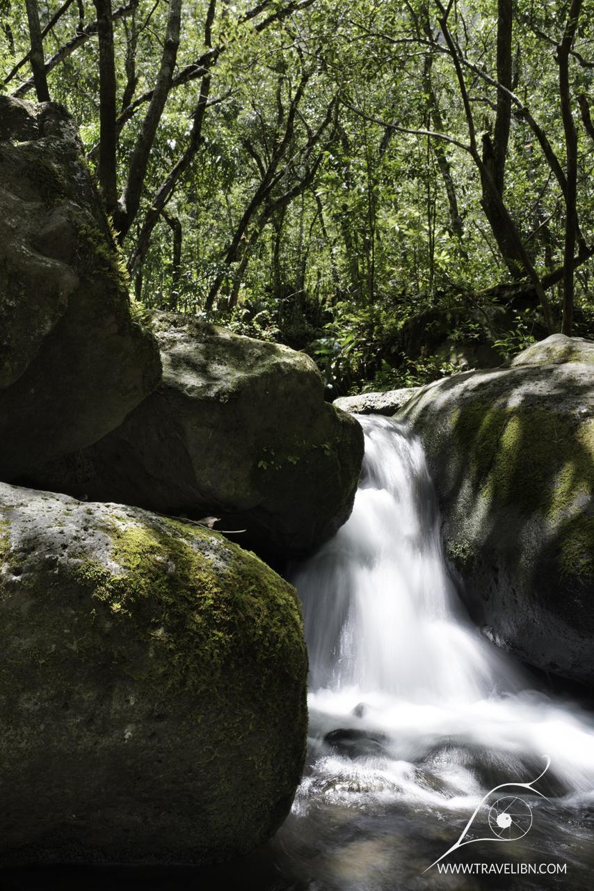 Hnakoa Stream