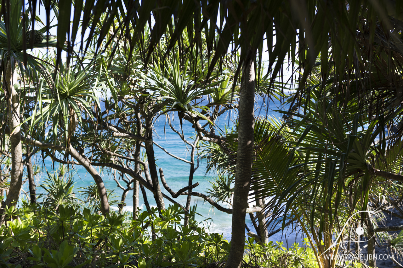 Pacific Ocean from Kalalau Trail.jpg