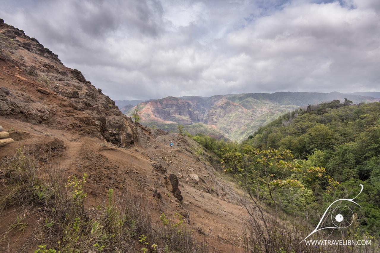 kukui trail.jpg